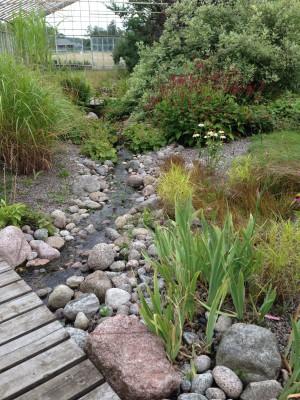 Alsta trädgård (1)